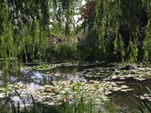 Taken on my trip to Giverny in August 2014
