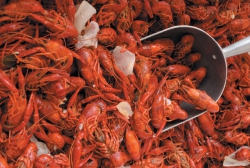 There's nothing like a New Orleans crawfish boil!